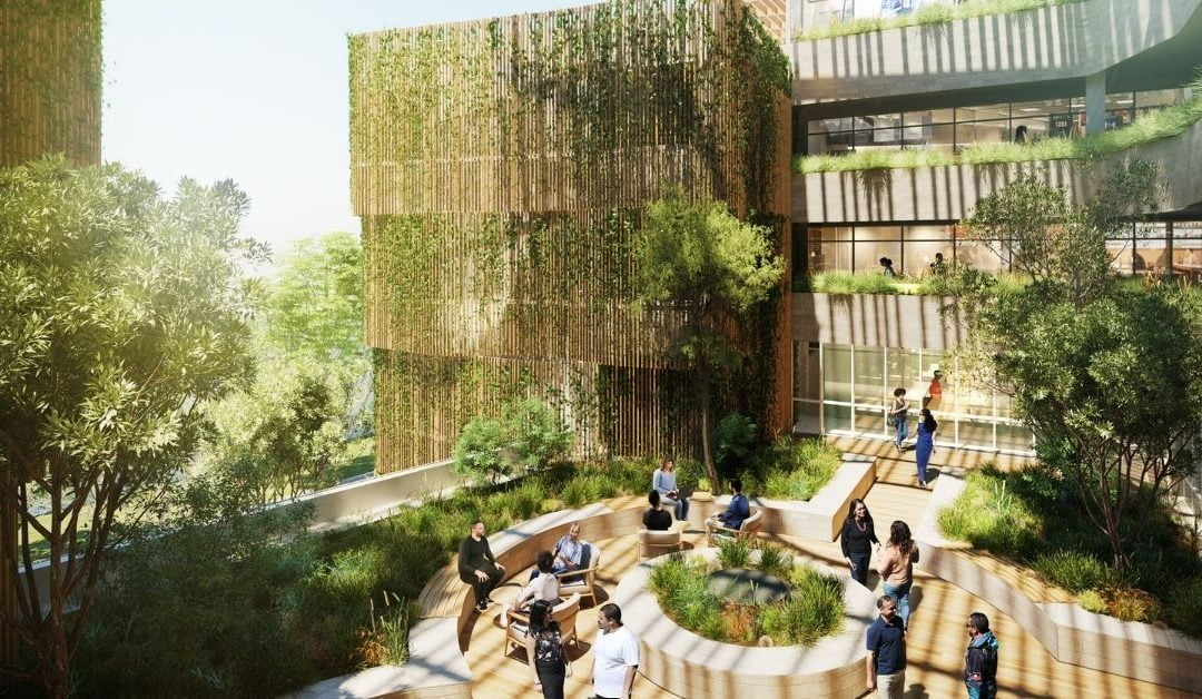 Closing the Gap: Australia's First Indigenous College Set for Sydney