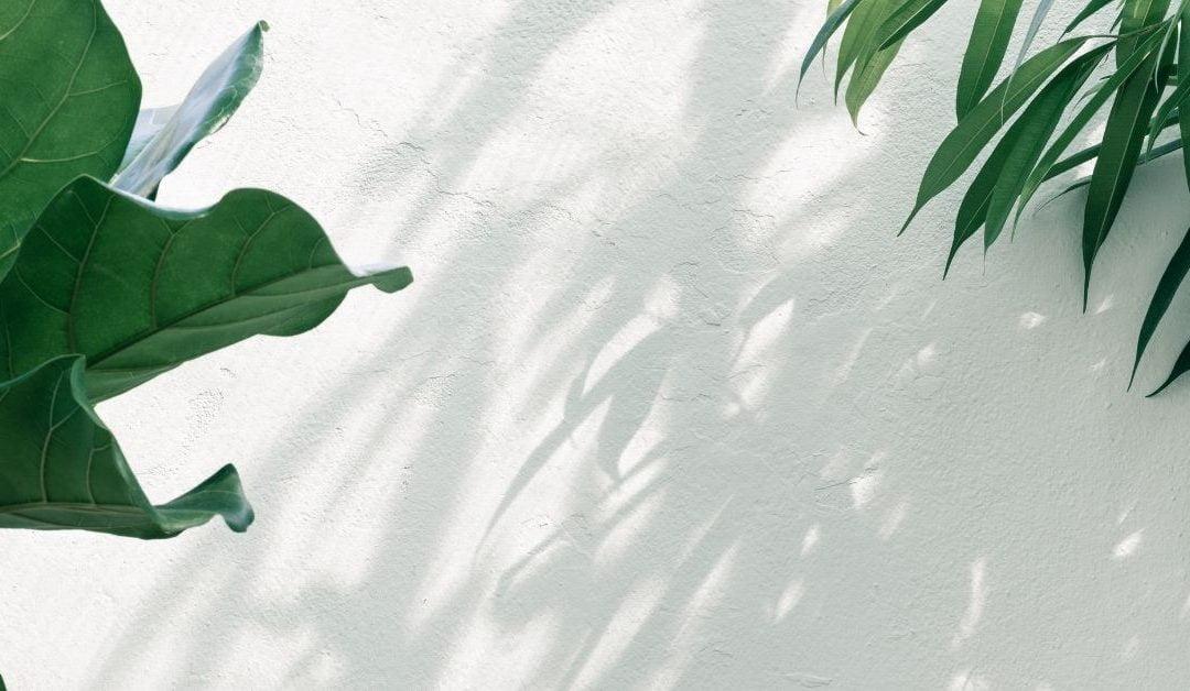 6 Surprising Self-Care Strategies that Work